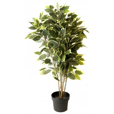 Kunstig plante - Fikus H80 cm